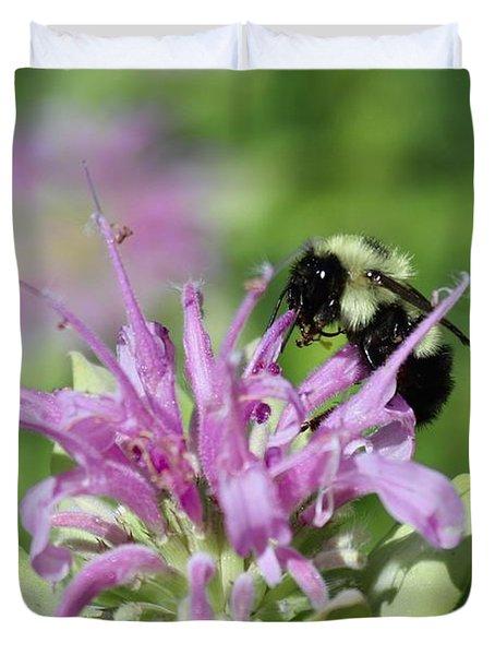 Bumblebee On Bee Balm Duvet Cover