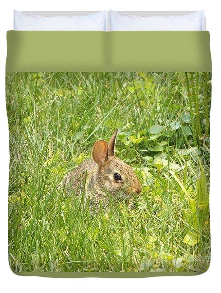 Bunny In The Grass Duvet Cover by Erick Schmidt