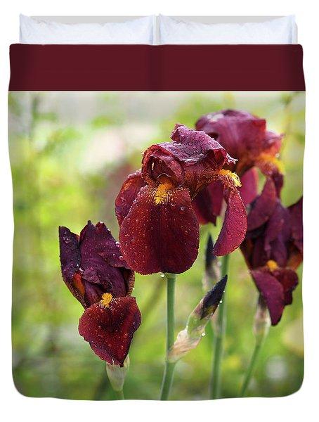Burgundy Bearded Irises In The Rain Duvet Cover
