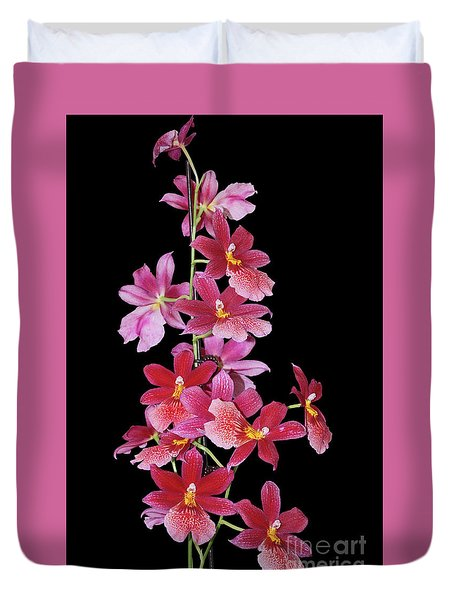 Burrageara Nelly Isler, Swiss Beauty Duvet Cover