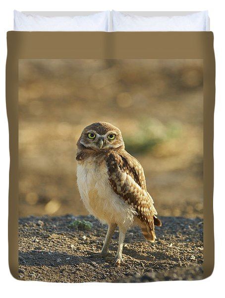 Burrowing Owl #6 Duvet Cover by Doug Herr