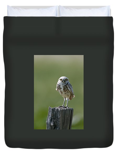 Duvet Cover featuring the photograph Burrowing Owl by Gary Lengyel