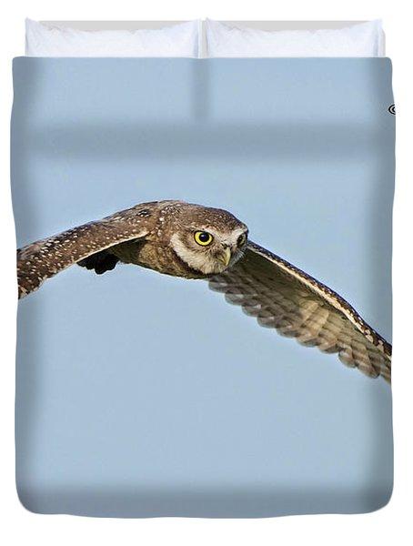 Burrowing Owl In Flight Duvet Cover