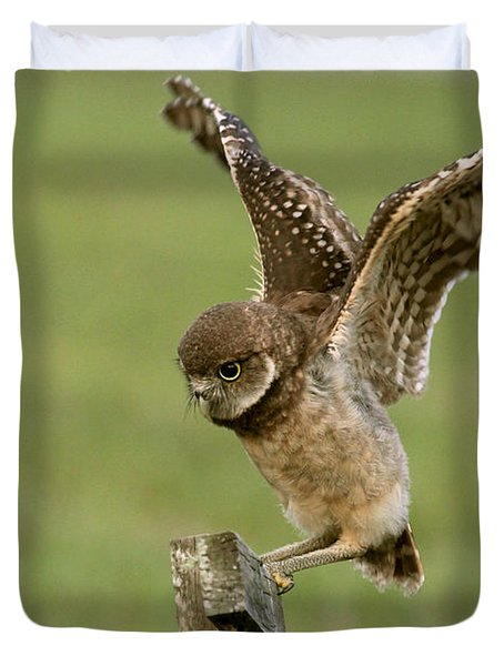 Burrowing Owl - Learning To Fly Duvet Cover