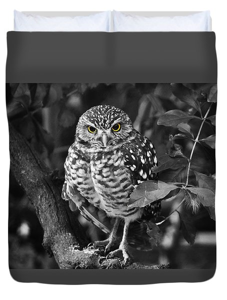 Burrowing Owl  Selective Color Eyes Duvet Cover
