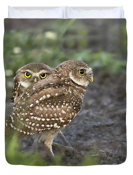 Burrowing Owl Twins Duvet Cover