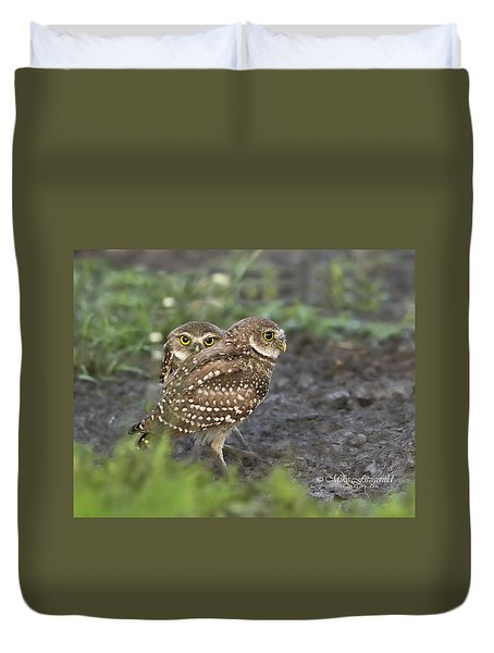 Burrowing Owl Twins Duvet Cover