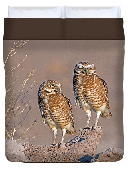 Burrowing Owls At Salton Sea Duvet Cover
