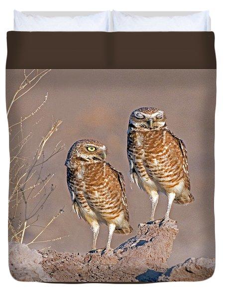 Burrowing Owls At Salton Sea Duvet Cover