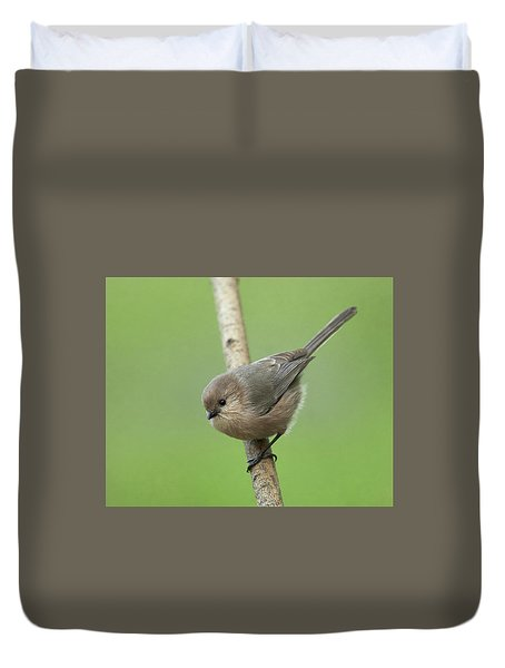 Bushtit Duvet Cover by Doug Herr
