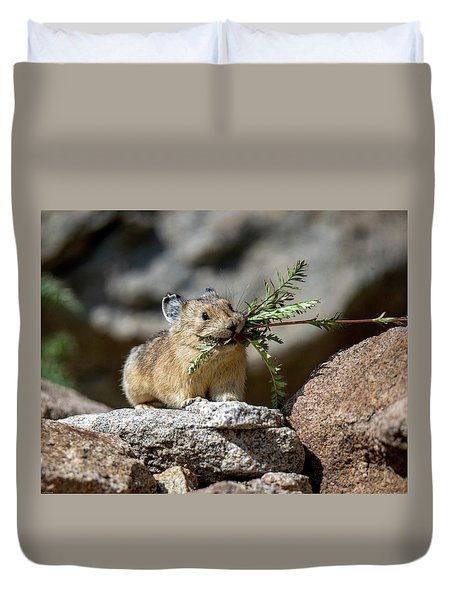 Busy As A Pika Duvet Cover