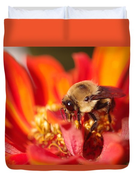Busy Bee II Duvet Cover by Greg Graham
