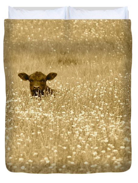 Buttercup In Sepia Duvet Cover