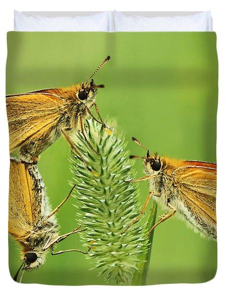 Butterflies Duvet Cover by Mircea Costina Photography