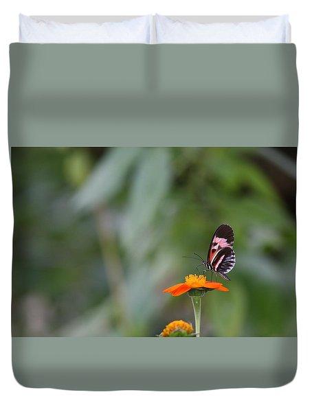 Butterfly 16 Duvet Cover