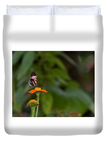 Butterfly 26 Duvet Cover