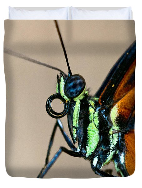 Butterfly Closeup Duvet Cover by Christopher Holmes