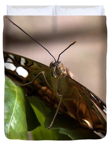 Butterfly Closeup Duvet Cover