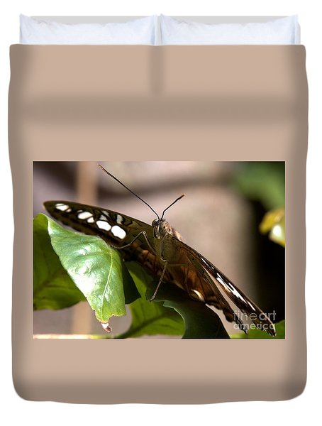 Duvet Cover featuring the painting Butterfly Closeup by Sue Harper