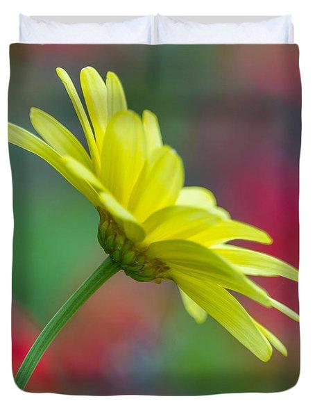 Butterfly Daisy Duvet Cover