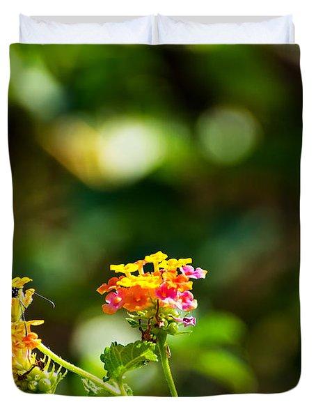 Butterfly On A Flower Duvet Cover