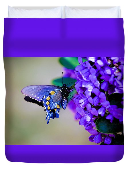 Butterfly On Mountain Laurel Duvet Cover