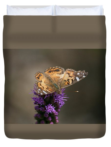 Butterfly In Solo Duvet Cover by Cathy Harper