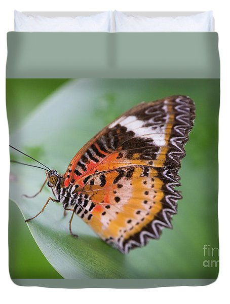Butterfly On The Edge Of Leaf Duvet Cover