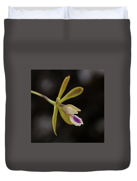 Butterfly Orchid #1 Duvet Cover