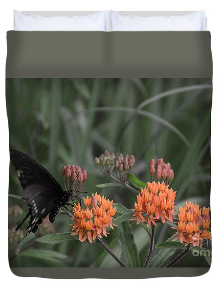 Duvet Cover featuring the photograph Butterfly Weed And Pipevine Swallowtail Butterfly by Donna Brown