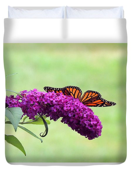 Butterfly Wings Duvet Cover by Teresa Schomig