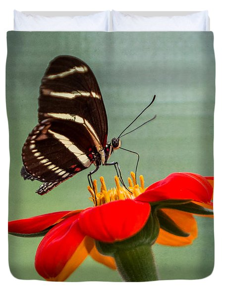 Butterfly Zebra Longwing On Zinnia Duvet Cover
