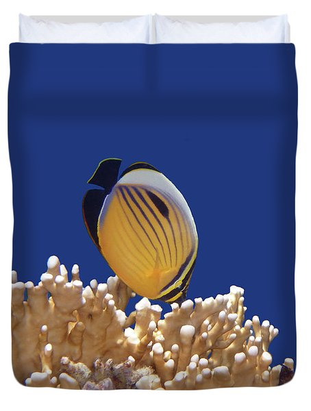 Butterflyfish And Corals Duvet Cover