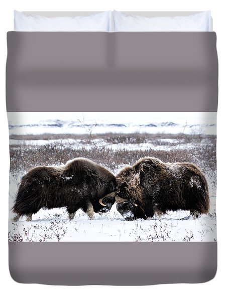 Butting Heads Duvet Cover
