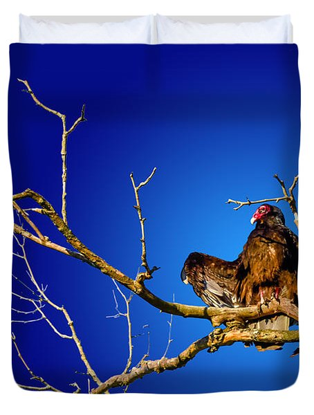 Buzzard Blues Duvet Cover by Brian Stevens