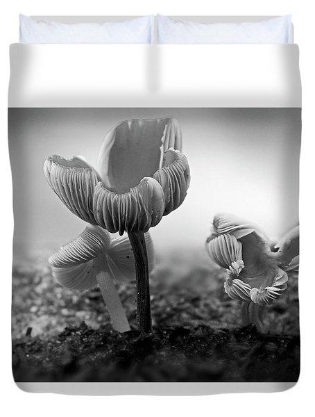 Bw Mushroom - 365- 232 Duvet Cover