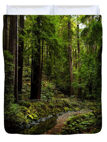By The Stream In Muir Woods Duvet Cover