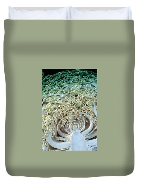Cabbage Universe Duvet Cover by Laurie Paci