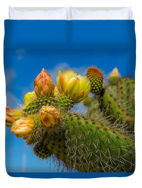 Cactus Blue Duvet Cover by Derek Dean