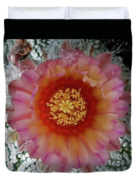 Cactus Flower 5 Duvet Cover