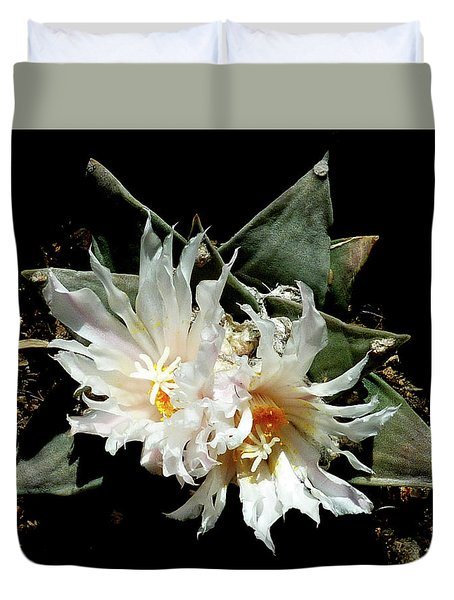 Cactus Flower 9 2 Duvet Cover