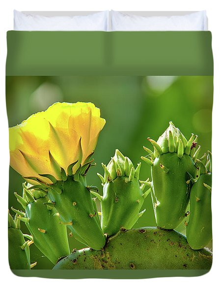 Duvet Cover featuring the photograph Cactus Flower On A Cactus Plant by Dan Carmichael