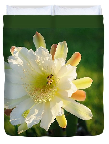 Duvet Cover featuring the photograph Cactus Flower With Bees by Bradford Martin