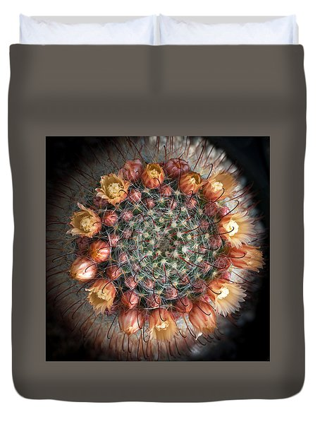 Cactus Flowers  Duvet Cover by Catherine Lau