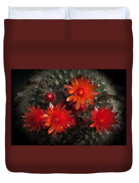 Cactus Red Flowers Duvet Cover by Catherine Lau
