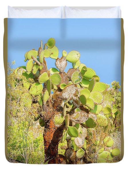 Cactus Trees In Galapagos Islands Duvet Cover by Marek Poplawski