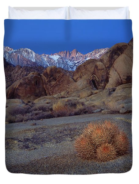 Cactus With A View Duvet Cover