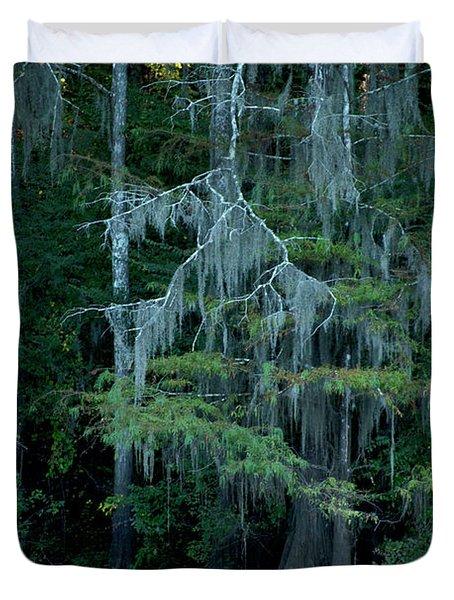 Caddo Lake #4 Duvet Cover