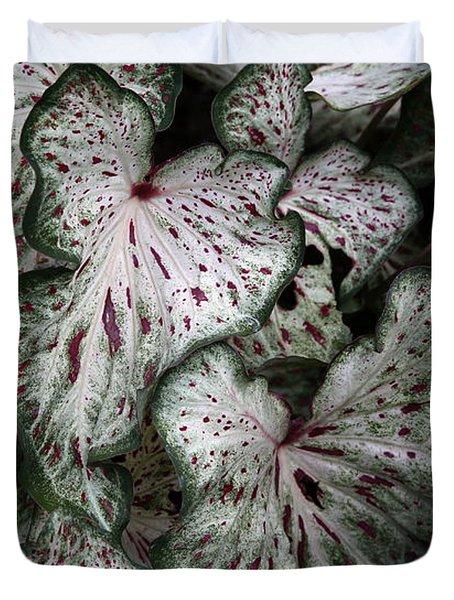Caladium Leaves Duvet Cover