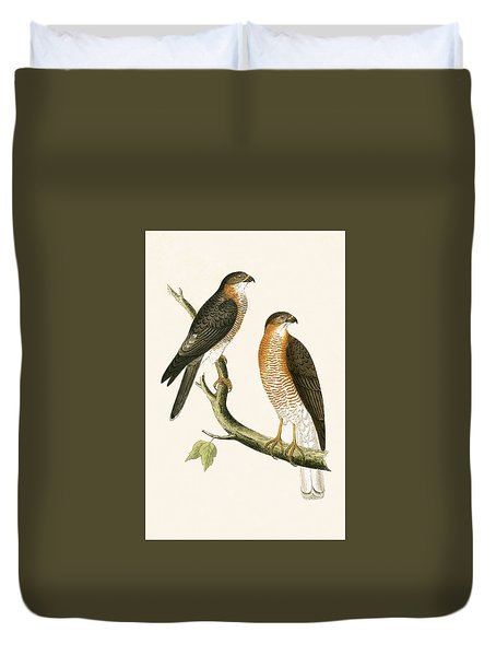 Calcutta Sparrow Hawk Duvet Cover by English School